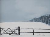 snowgate-i