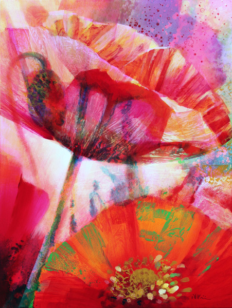 amid-poppies-4-80-x-60cm