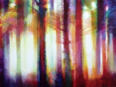 forest-sunrise-2-80-x-150cm